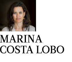 Political Scientist